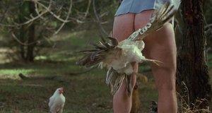 Курица в заднице – Я, снова я и Ирэн (2000)