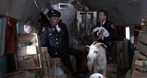 Частный самолет для важных персон – Полицейская академия 5: Место назначения – Майами бич (1988)
