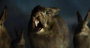 Голодные кролики – Одинокий рейнджер (2013)