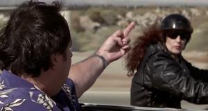 Неприличный жест в машине Гитлера – Крысиные бега (2001)