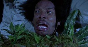 Живая конопля – Очень страшное кино 2 (2001)