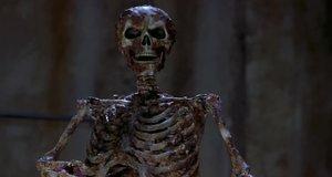 Безобидный скелет – Очень страшное кино 2 (2001)