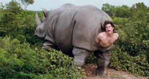 Эйс Вентура в носороге – Эйс Вентура 2: Когда зовет природа (1995)