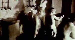 Голая Марина Левтова – Мед осы (1991)